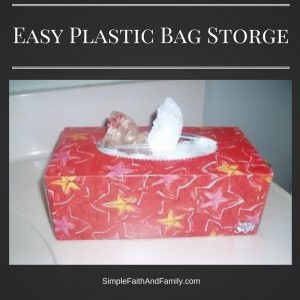 easy-bag-storge_edited